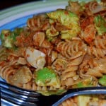 Rotini With Sun-dried Tomato Pesto