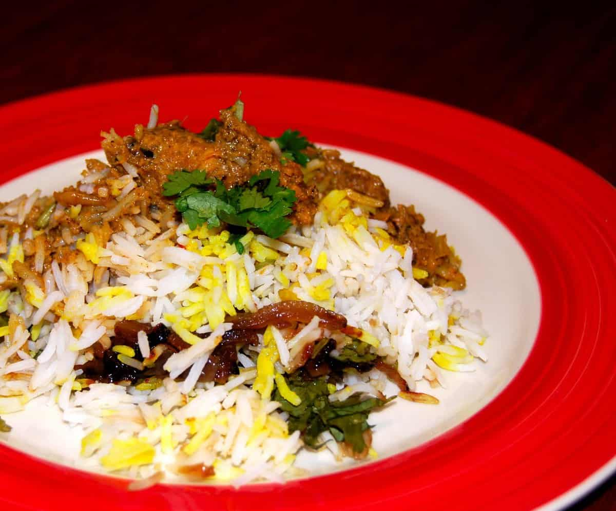 """Front shot of a tasty, spicy vegan """"chicken"""" biryani with gravy and cilantro in a red and white plate."""