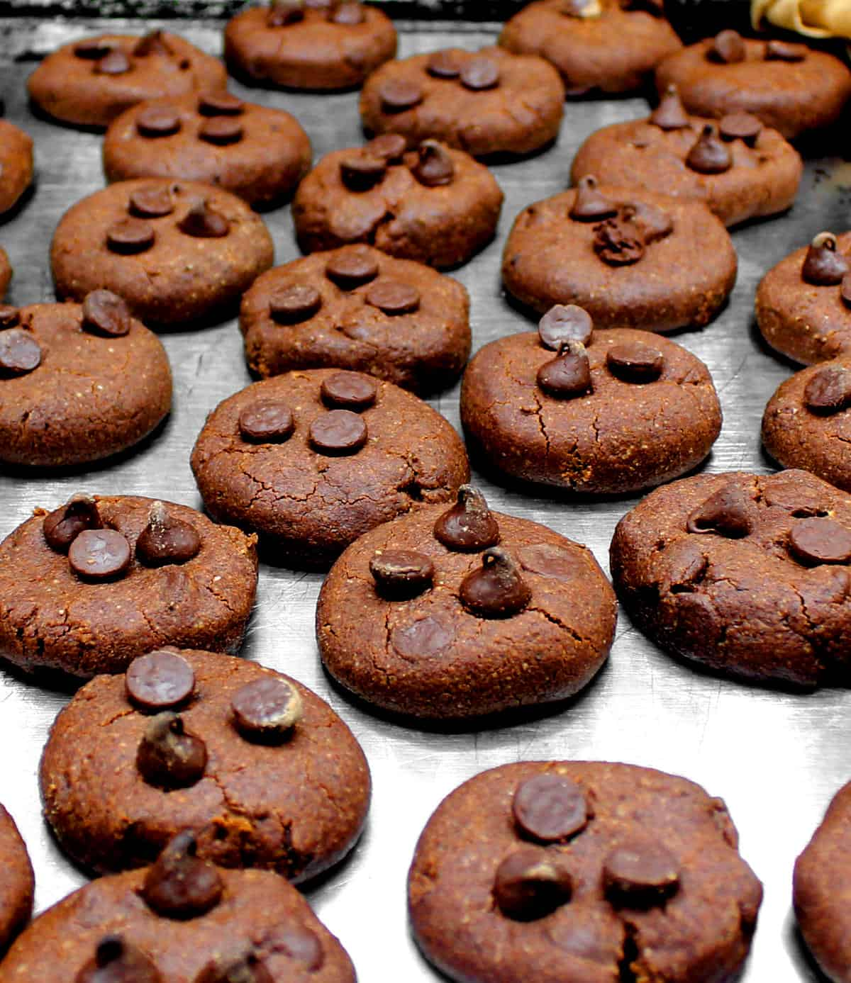 Vegan death by chocolate cookies on a cookie sheet with chocolate chips.