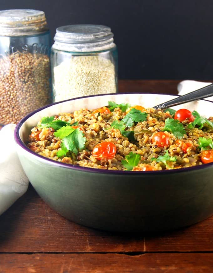 Sprouted Bean and Quinoa Pulao. Vegan. https://holycowvegan.net