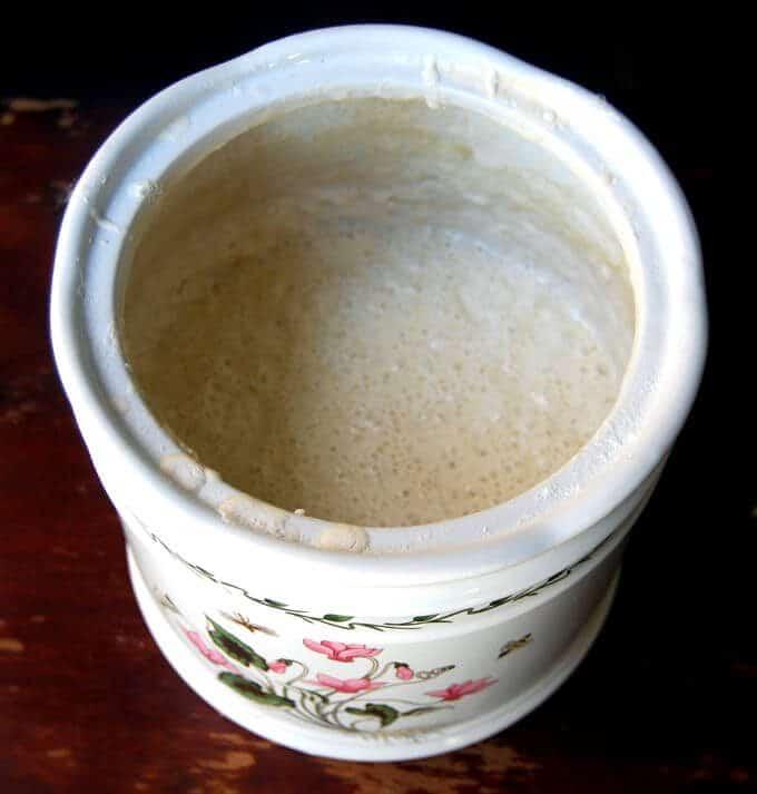 sourdough-starter-3.JPG