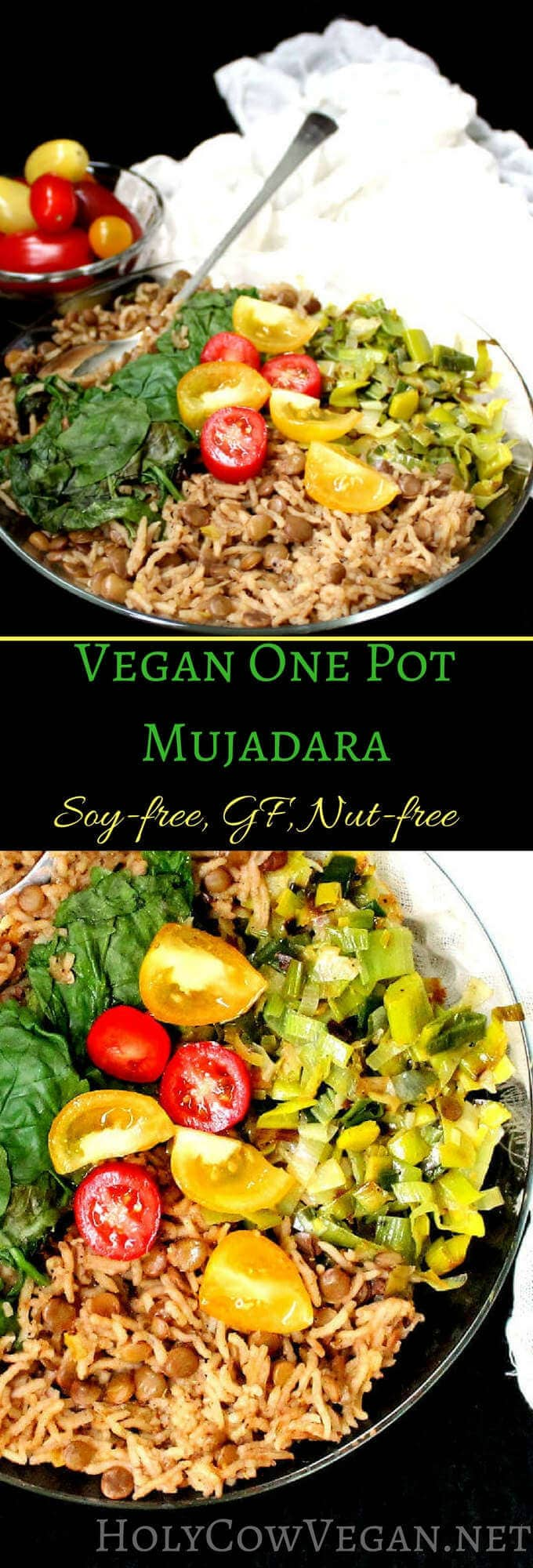 Vegan One-Pot Mujadara, gluten-free, soy-free, nut-free - holycowvegan.net