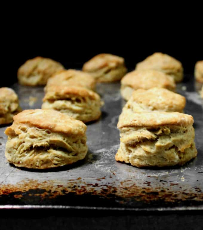 Close up front shot of two tall vegan buttermilk biscuits on a baking sheet