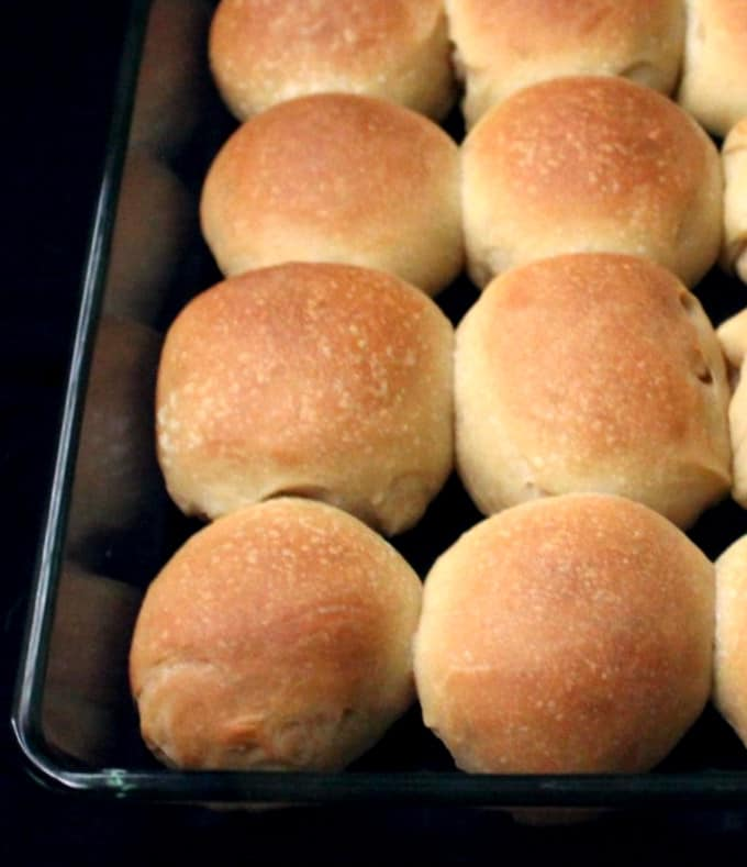 Close up shot of several soft sourdough dinner rolls