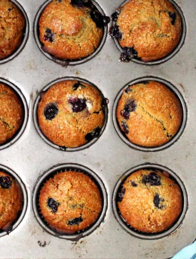 Vegan Blueberry Sourdough Muffins in a muffin pan