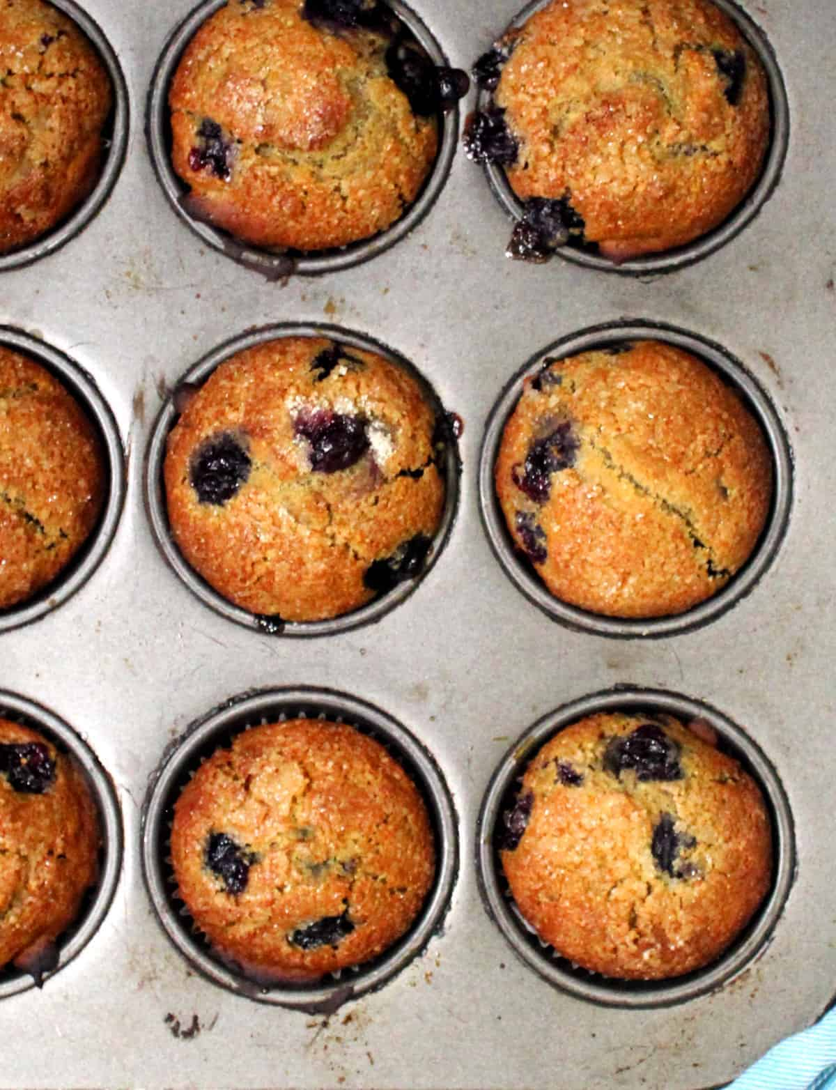 Overhead shot of six vegan blueberry sourdough muffins.