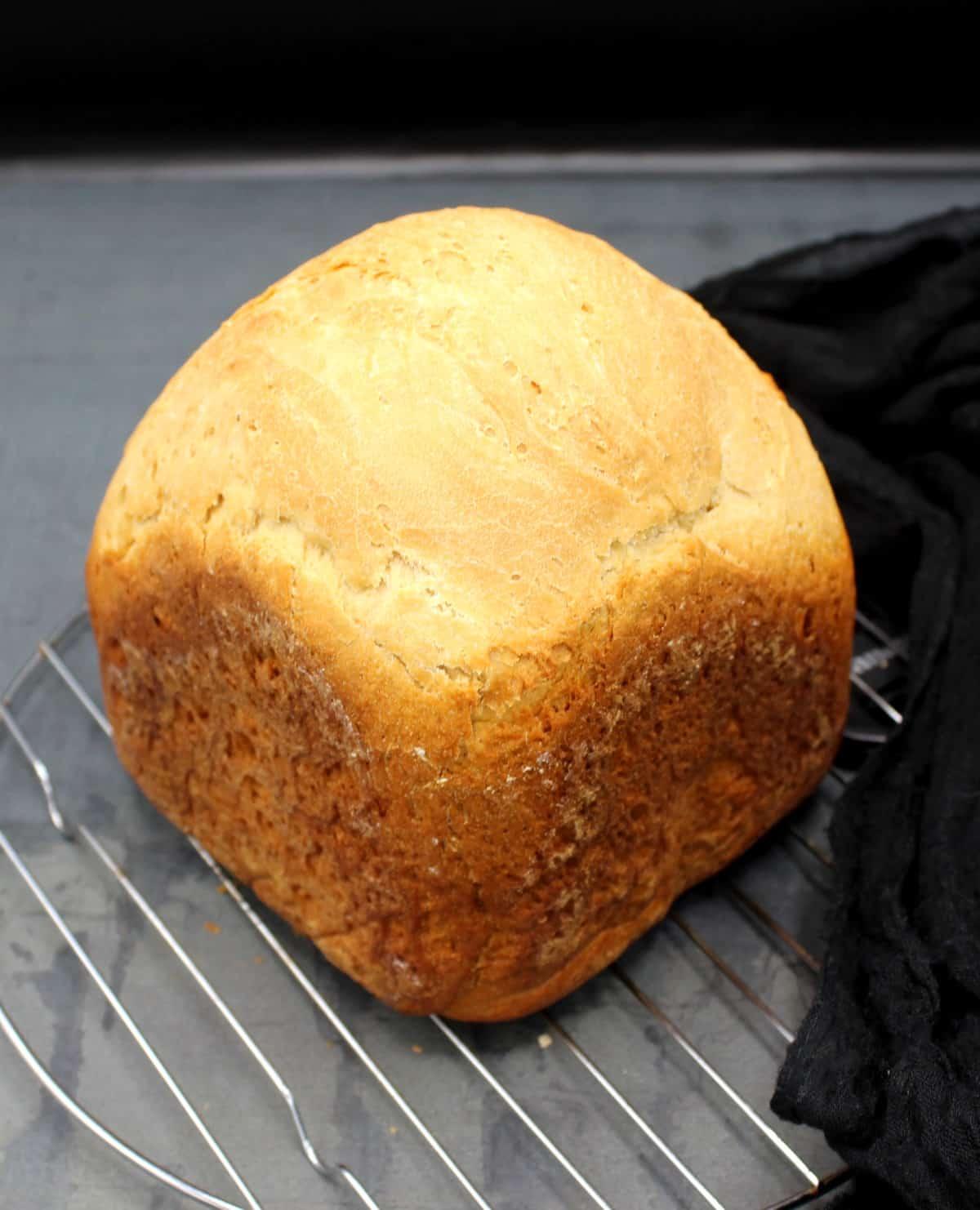 A chubby, beautiful loaf of bread machine sourdough bread.