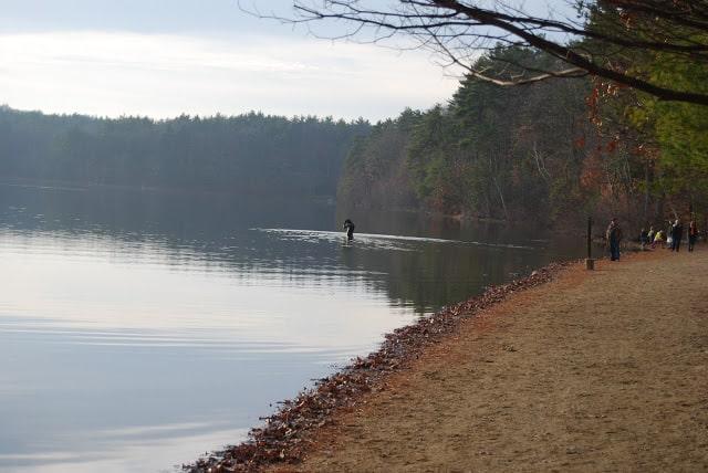 Photo of Walden Pond near Concord, Massachusetts