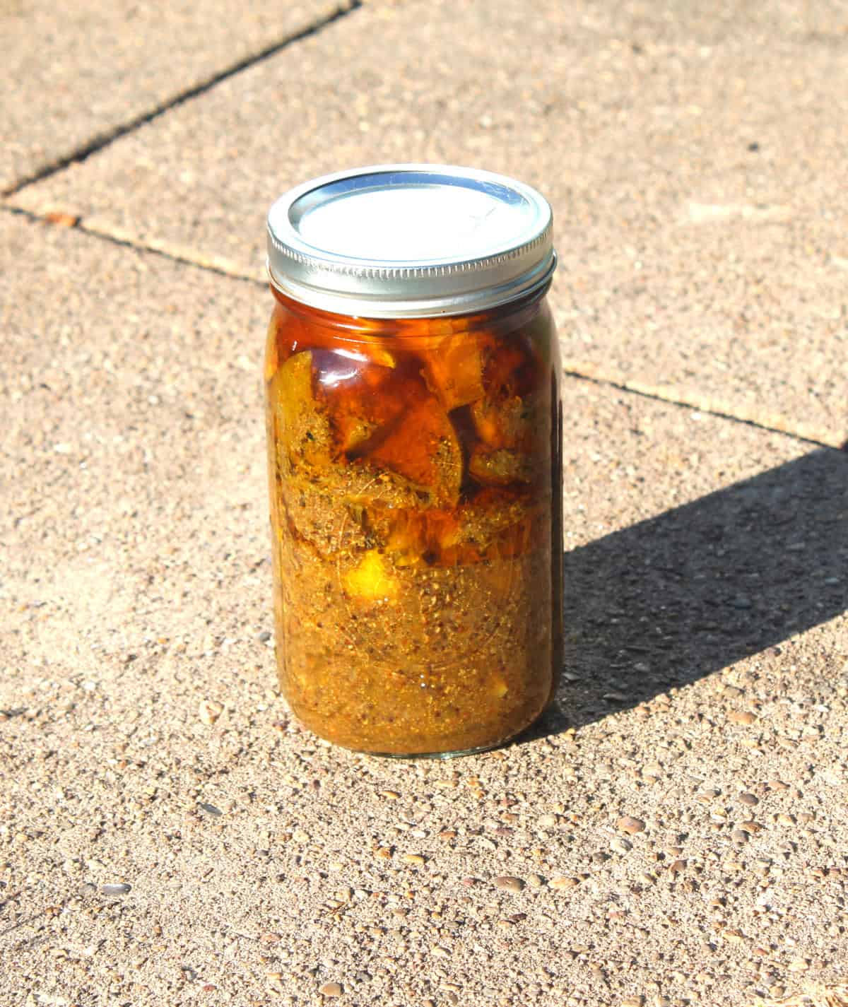 Lime pickle standing in full sun